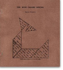 DAVID BRAZIL THE BOOK CALLED SPRING PORTABLE PRESS